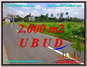 FOR SALE Magnificent PROPERTY 2,000 m2 LAND IN UBUD BALI TJUB580