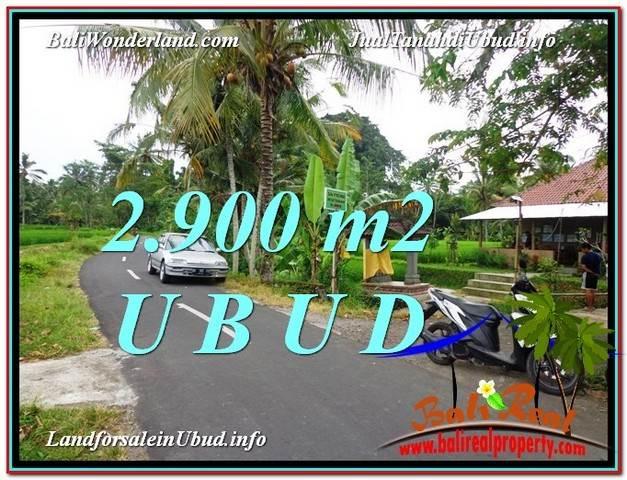 LAND FOR SALE IN Sentral Ubud BALI TJUB586