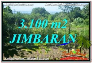 Affordable PROPERTY 3,100 m2 LAND FOR SALE IN JIMBARAN BALI TJJI113