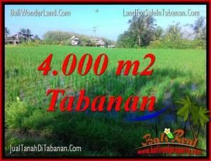 4,000 m2 LAND IN Tabanan Selemadeg BALI FOR SALE TJTB352