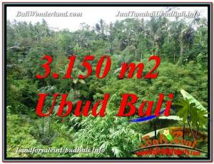 FOR SALE Magnificent 3,150 m2 LAND IN UBUD TJUB608