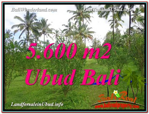 FOR SALE Exotic LAND IN Ubud Tegalalang BALI TJUB609