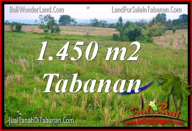 Exotic LAND SALE IN Tabanan Selemadeg TJTB343