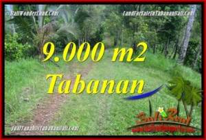 Magnificent 9,000 m2 LAND FOR SALE IN TABANAN TJTB364