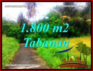Exotic 1,850 m2 LAND SALE IN Tabanan Selemadeg BALI TJTB357