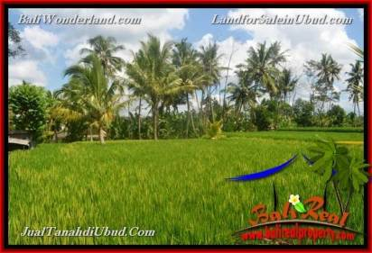 Magnificent PROPERTY LAND FOR SALE IN UBUD BALI TJUB651