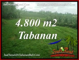 Beautiful LAND IN TABANAN SELEMADEG BALI FOR SALE TJTB387