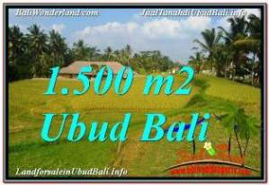 Beautiful 1,500 m2 LAND FOR SALE IN UBUD TEGALALANG TJUB668