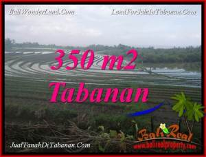 Magnificent 350 m2 LAND IN TABANAN SELEMADEG BALI FOR SALE TJTB386