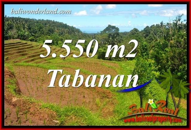 Exotic Property Land sale in Tabanan Bali TJTB405