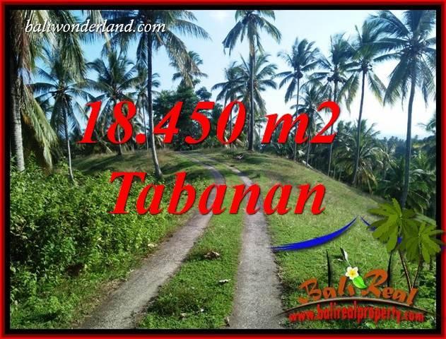 Tabanan Bali 18,450 m2 Land for sale TJTB410