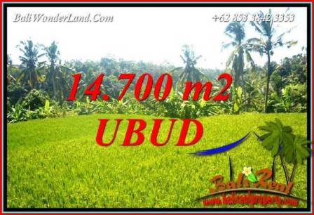 Exotic Property 14,700 m2 Land sale in Ubud Tegalalang Bali TJUB717