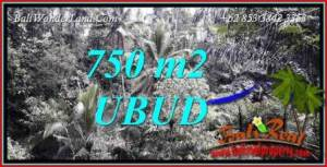 Beautiful Property 750 m2 Land in Ubud Tampak Siring Bali for sale TJUB742