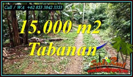 LAND SALE IN TABANAN BALI TJTB469