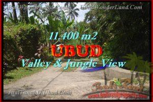 Land for sale in Ubud Bali, Great view in Ubud Payangan – TJUB431