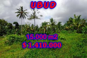 Exotic Land for sale in Ubud Bali 150 Ares in Ubud Tegalalang