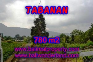 Land for sale in Tabanan Bali, Magnificent view in Tabanan Bedugul – TJTB100