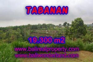 Fantastic Property for sale in Bali, land sale in Tabanan Bali – TJTB086