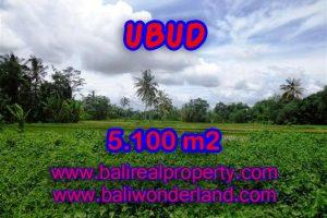 Land in Ubud Bali for sale, nice view in Ubud Tegalalang Bali – TJUB368