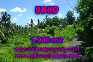 Land in Ubud for sale, Outstanding view in Ubud Center Bali – TJUB379