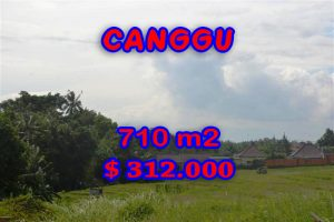 Astonishing Property in Bali, land in Canggu Bali for sale – TJCG110