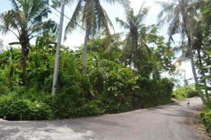 Land for sale in Bali 1,300 m2 in Canggu Pererenan