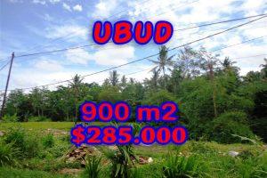 Astonishing Property in Bali, Land in Ubud Bali for sale – TJUB259