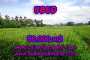Land in Bali for sale, astounding view in Ubud Bali – TJUB351