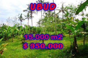 Land in Bali for sale, Stunning view in Ubud Bali – TJUB261