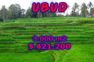Land for sale in Ubud Bali River side – TJUB229E
