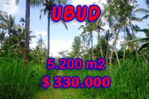 Bali land for sale, Fantastic rice fields and river valley view in Ubud Tegalalang – TJUB296