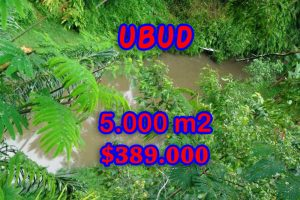 Incredible Property for sale in Bali, land for sale in Ubud Bali  – 5.000 sqm @ $ 78