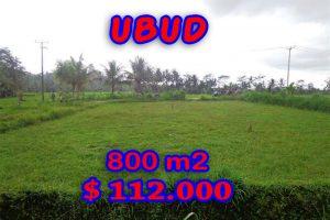 Land for sale in Bali, magnificent view Ubud Bali – TJUB284