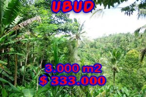 Land for sale in Bali 30 Ares in Ubud