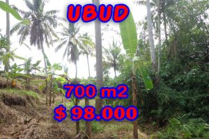 Land for sale in Bali, wonderful view in Ubud Bali – TJUB245