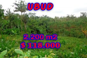 Magnificent Property for sale in Bali, land for sale in Ubud Bali  – 2.200 sqm @ $ 53