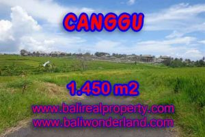 Interesting Land for sale in Canggu Bali, Ocean and rice fields view in Canggu Cemagi– TJCG137