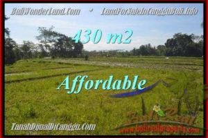 Exotic LAND IN Canggu Pererenan FOR SALE TJCG183