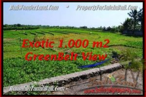 Magnificent Canggu Pererenan LAND FOR SALE TJCG184