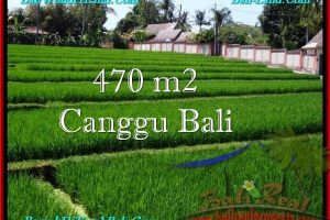 Exotic PROPERTY LAND FOR SALE IN Canggu Pererenan BALI TJCG187