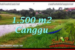 Exotic PROPERTY 1,500 m2 LAND IN CANGGU BALI FOR SALE TJCG198