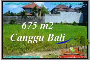 Magnificent LAND FOR SALE IN Canggu Brawa BALI TJCG200