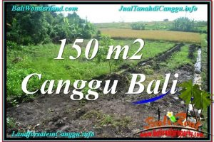 Affordable PROPERTY CANGGU 150 m2 LAND FOR SALE TJCG213