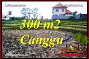 Magnificent 300 m2 LAND FOR SALE IN CANGGU BALI TJCG230