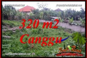 Exotic CANGGU LAND FOR SALE TJCG231