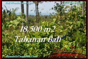 Affordable PROPERTY LAND FOR SALE IN TABANAN TJTB232