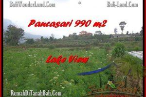 Affordable LAND FOR SALE IN Tabanan Bedugul BALI TJTB174
