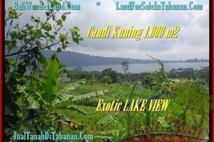 Affordable PROPERTY 1.000 m2 LAND IN TABANAN BALI FOR SALE TJTB179