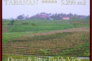 Affordable PROPERTY LAND SALE IN Tabanan Selemadeg BALI TJTB185