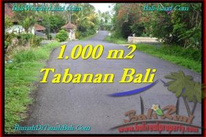Magnificent PROPERTY LAND IN TABANAN FOR SALE TJTB243
